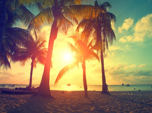 Brandon Frere: Should a CEO Take a Vacation? Yes!