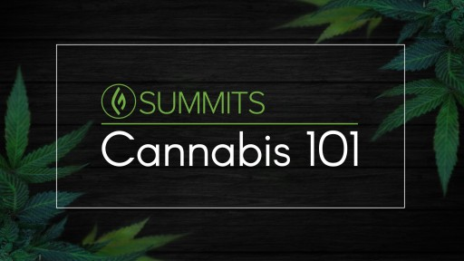 'Cannabis 101 Summit' Goes Live on June 18, 2018