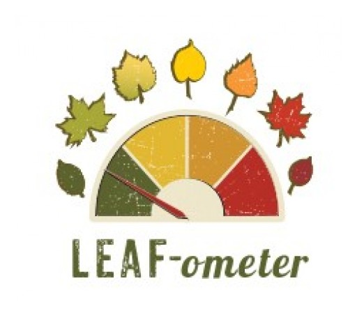 As Autumn Approaches, Visitors Can Catch the Colors With Flagstaff's LEAF-ometer