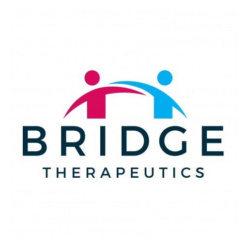 Pharmaceutical Startup, Bridge Therapeutics, Names David H. Bergstrom, Ph.D. as New Chief Operating Officer