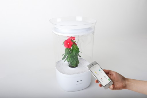 Bloomengine Taking Part in the Urban Gardening Revolution by Capturing 100 Percent Funding on Kickstarter in Four Days