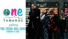 One Tamarac Multicultural Festival 2020