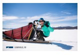 Dogsledding in Leadville