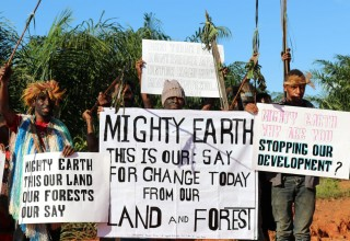 Indigenous Papuans protest against Mighty Earth