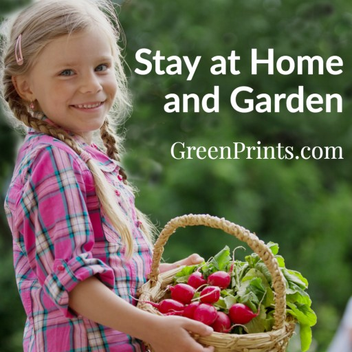 GreenPrints Magazine Launches 'Stay at Home and Garden' Initiative