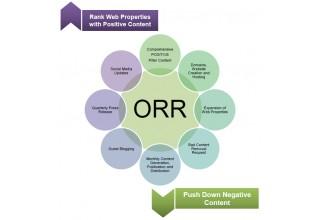 Online Reputation Repair Process