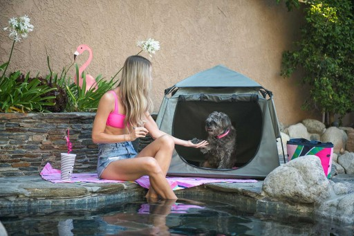 With the New Pop 'N Go Pets Playpen® by The California Beach Co., Pets Can Always Tag Along