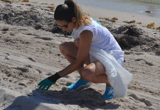 Cleanup of beach in Miami