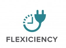 FLEXICIENCY