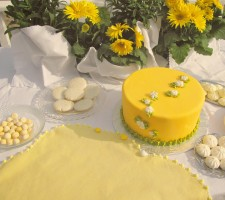 The Lemon Pudding Felt Story Board
