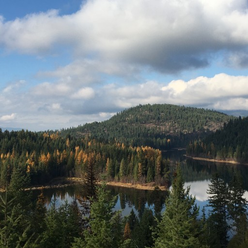 A Hit Out of the Park: Community Forest Collaboration Protects Montana Lake