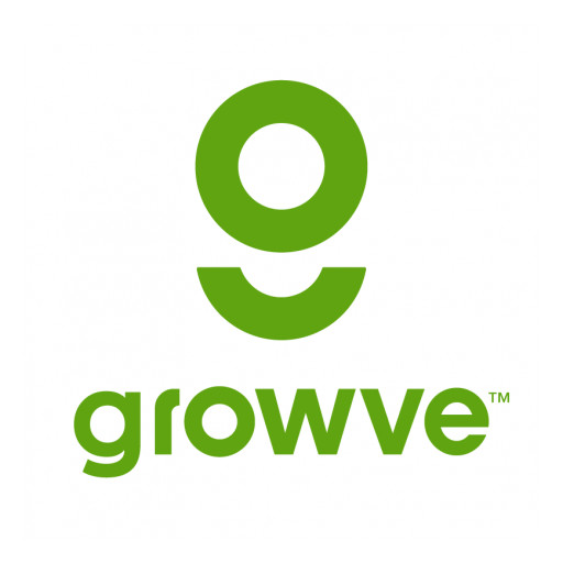Growve Acquires Marketplace Agency ZonLux Digital