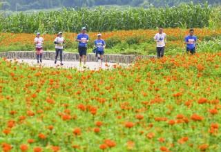 Tengchong Flower Sea Marathon