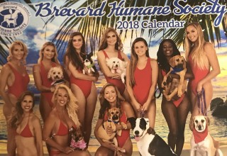 Baywatch PET Calendar