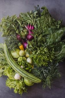 County Line Harvest