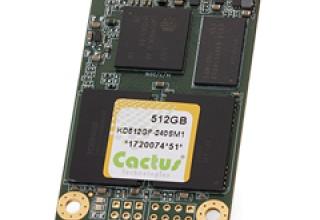512GB mSATA - 240S MLC NAND