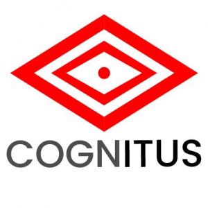 Cognitus Consulting LLC
