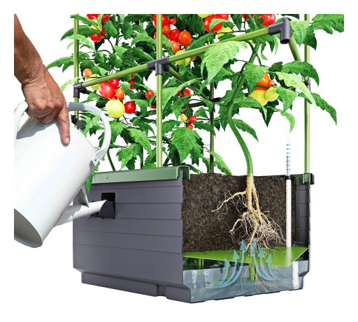 Grow Vegetables and Herbs in a City Jungle Planter From BioGreen
