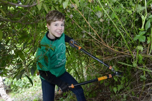 Scientology News: Caring for Seattle's Kinnear Park on Earth Day