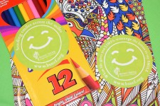 BSNCF Smile Kit Stickers