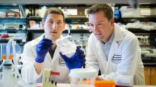Josh Zimmerman, PhD, (right) and Todd McDevitt, PhD