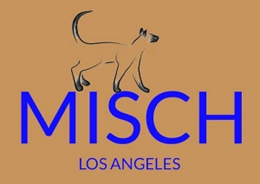 Misch Builds on Legacy with Pouch Wallet