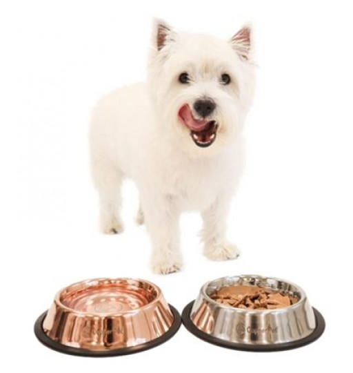 Say Goodbye to Slimy Pet Bowls!