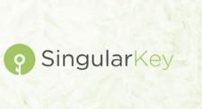 Singular Key Logo