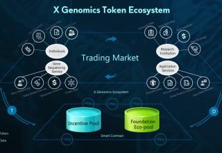 X Genomics Token Ecosystem