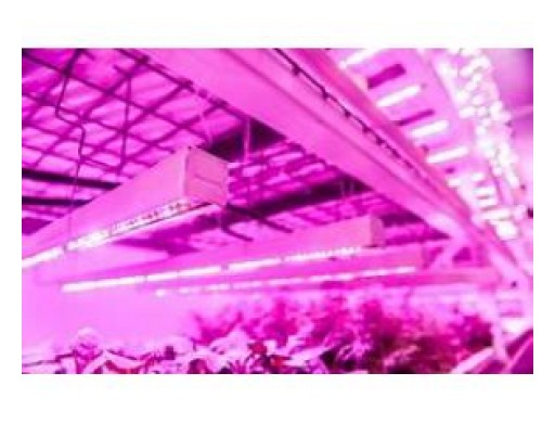 Global LED Agricultural Grow Lights Market Research Report 2018