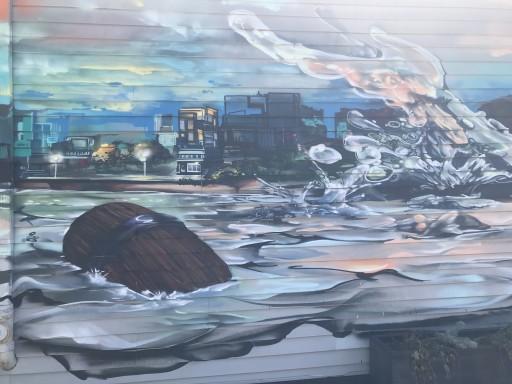 Adam Civalier Provides the Canvas for New York's Local Rochester Graffiti Artists
