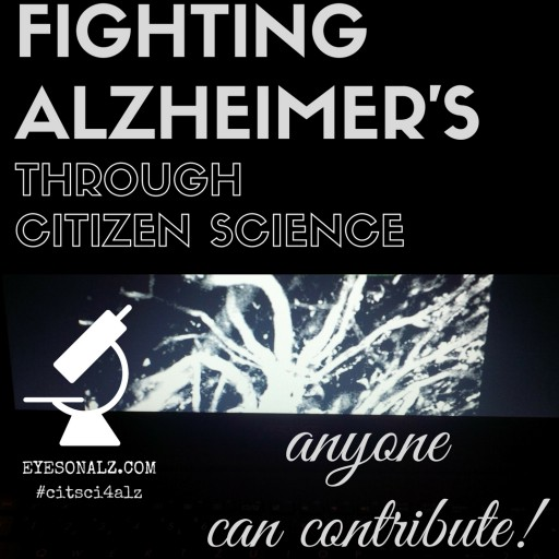 Citizens Can Fight Alzheimer's Directly With a New Online Game