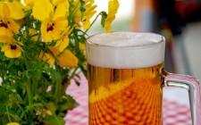 Beer is a staple of Oktoberfest