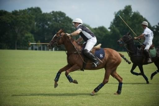Southern Spring Farm Commences Summer Polo Season This Friday