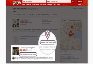 Enhance Yelp Display