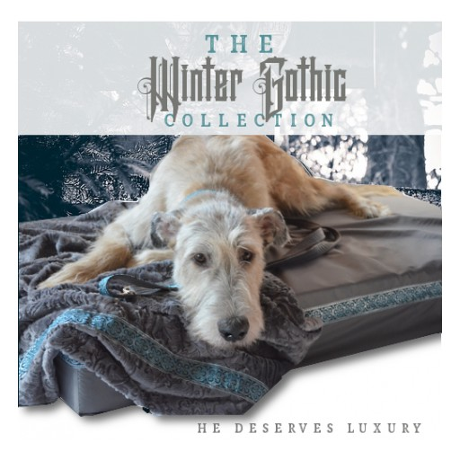 Big Ass Dog Company Introduces a New Luxurious Winter Collection for Big Dogs!