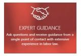 Expert Guidance