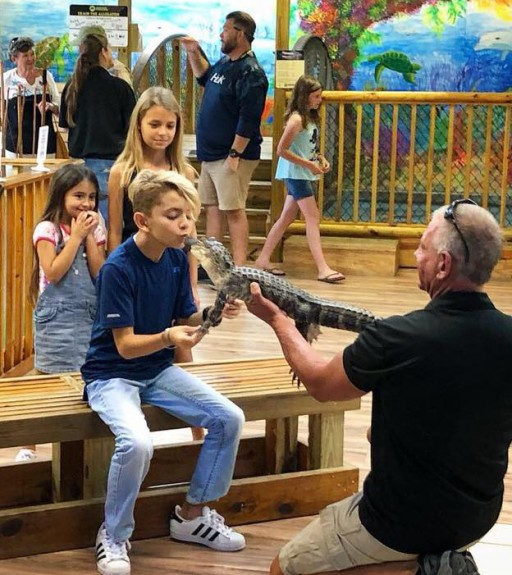 Alligator Attraction in Florida Earns Certified Autism Center™ Designation