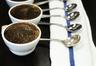 SteamDot Coffee Cupping