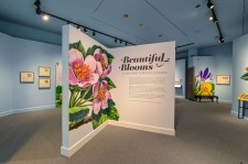 """""""Beautiful Blooms"""" Exhibition Gallery"""