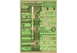 50,000 Practical Uses of Industrial Hemp