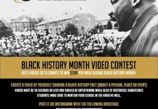 BlackFacts Instagram Video Contest