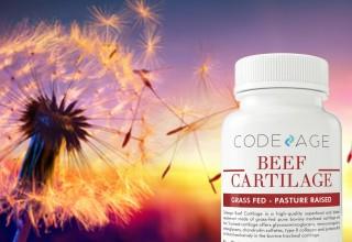 Codeage Beef Cartilage