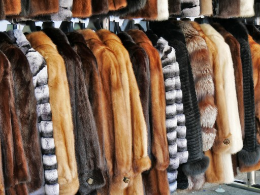Affordable and Reliable Winter and Fur Storage From NYC Luxury Cleaner, Arthur Copeland