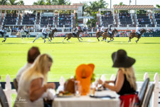 CBS Sports to Broadcast Prestigious 2021 U.S. Open Polo Championship® on May 9 Presented by The Palm