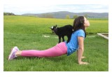 Gilbertsville Farmhouse - Goat Yoga