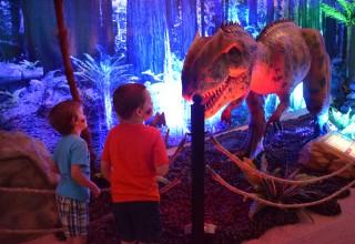 Reading Public Museum - Dinosaurs Around the World Exhibition