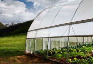 High Altitude Farming at Knapp Ranch
