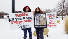 Harley's Dream volunteers protesting a Minnesota pet store that sells puppies and kittens