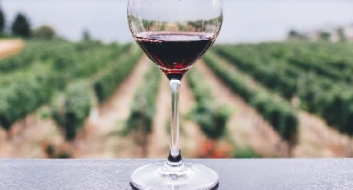 Atrium Wine Brokers to Represent St. Stephen Organic Vineyards in California